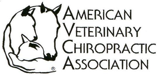 AVCA-Logo-500